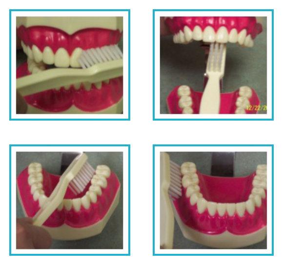 Atlantic Dental Healthcare - Brushing Your Teeth